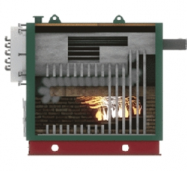 boiler with moving grates